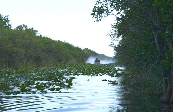 tour en air boat
