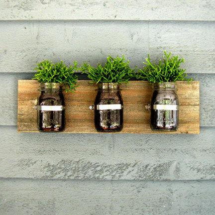 mason jar plantes