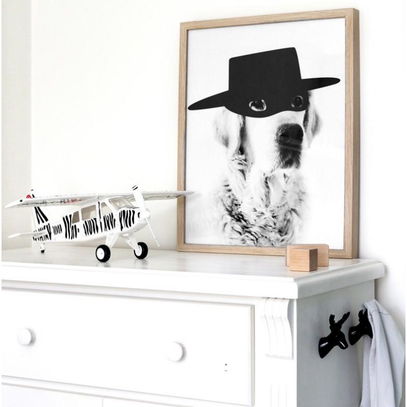 affiche zorrodog